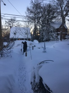 Help Your Neighbors Dig Out!