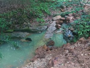Pope Branch Restoration Project Update